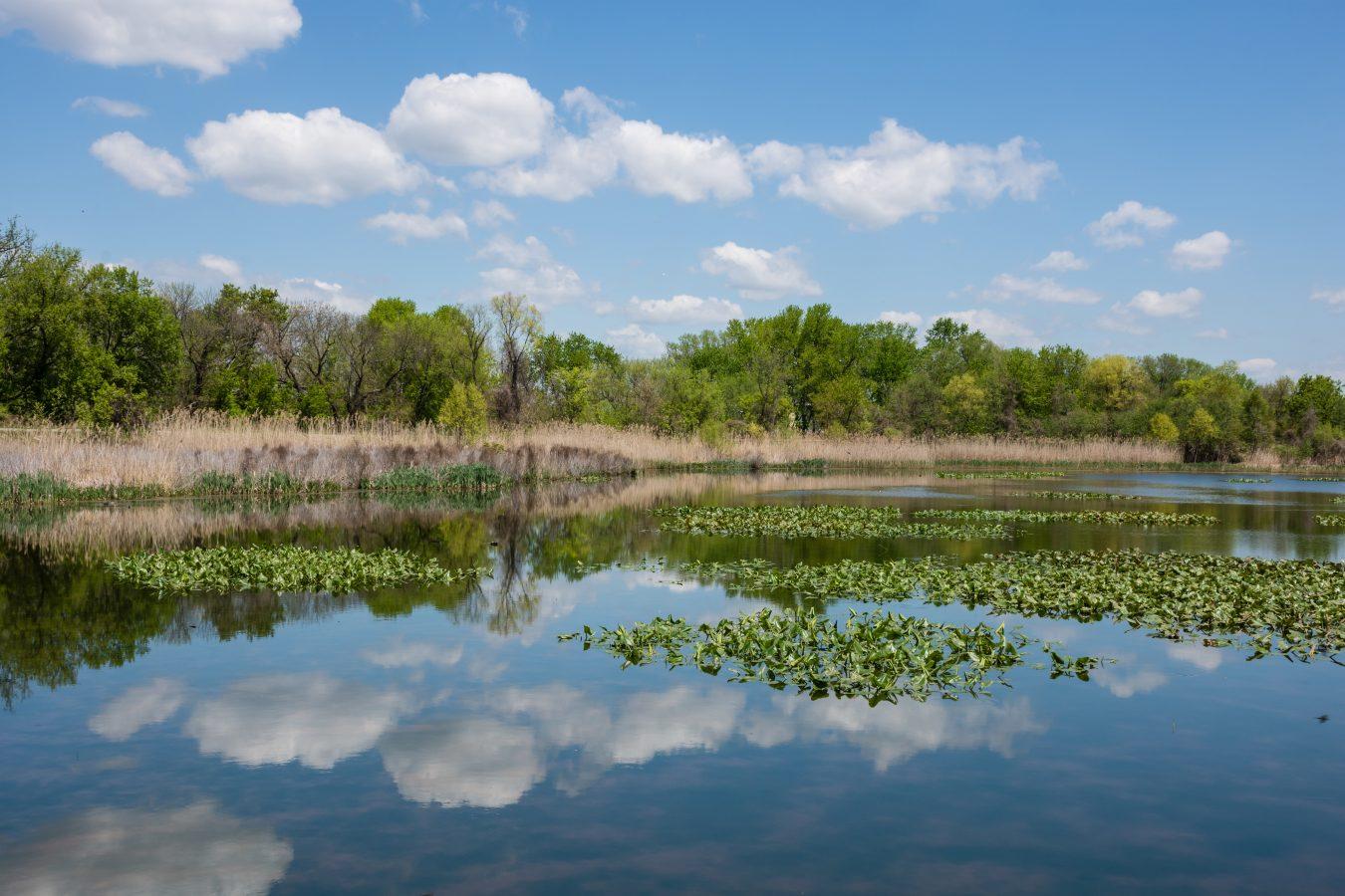 PA Wetlands